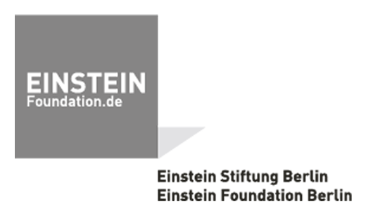 Logo_Einstein_Grey